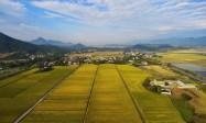 走进乡村看小康丨生态美、产业旺、村民富——从日益蓬勃的乡村旅游透视乡村振兴强劲动能