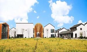打造不落幕的农展会上海数字农业产销服务平台建设成效初显