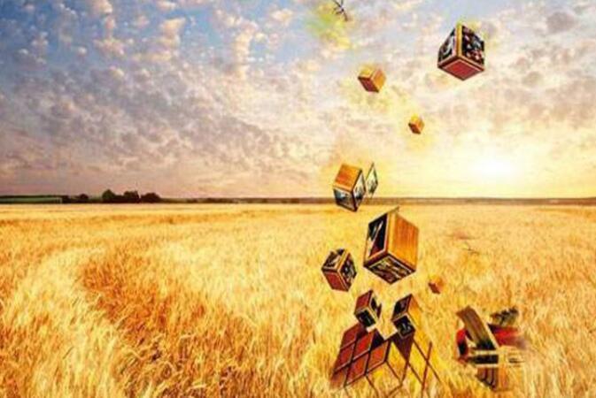 央行提出农村金融服务改革五大任务